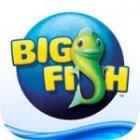 Big Fish Games deals