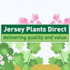 Jersey Plants Direct deals