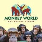 Monkey World deals