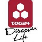 Tog24 deals