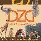 dudley zoo vouchers