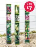 Fruit Trees - 2 for £7.00 @ Lidl