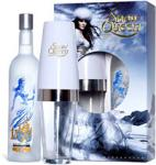 Win Snow Queen Vodka And A Cocktail Shaker- The Culinary Guide