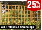 25% off Tiles, Deck Boards, 2.5L Colour Emulsion Paint*, Deck Lights, Trellis, Exterior Lighting, Garden Sleepers, Border Log Rolls & More @ Wickes