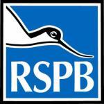 FREE RSPB 'Birds in your garden' booklet