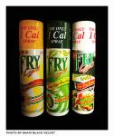 Frylight 1 calorie spray £1.50 (£2.28 usually) @ Tesco - Rarely on offer any more!
