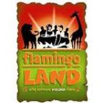 50% off at flamingo land Yorkshire if your quick (23 remaining)