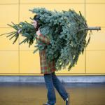 IKEA Christmas tree, £25 and recieve £20 Ikea voucher