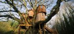 4 to 13-year-olds - design treehouse - win stay at treetops treehouse in devon