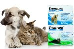 Frontline cats & dogs flee& tick pipettes £11.99 @ Groupon - vetepet.com