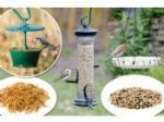 WIN a CJ Wildlife feeding pack for your birds @ Bird Watching (Great Competitions)