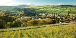 Great wine tour so cheap only £20 at Holmfirth Vineyard @ TravelZoo