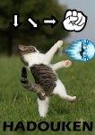 Ultra Street Fighter IV Upgrade (Steam) £9.60 using code @ Greenmangaming