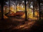 Win a Family Woodlands Escape with Forest Holidays @ panmacmillan.com