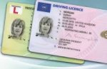 Check your driver licence for free
