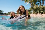 Win a 14 night wild holiday to Orlando for 2 adults and 2 children @ Mirror