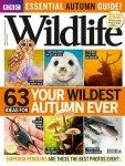 BBC Wildlife Magazine 3 issues for £1