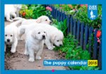 Free guide dogs 2015 calendar of puppies