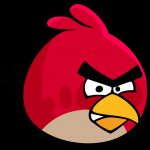 [Windows Phone] All Angry Birds games are now FREE