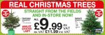 6ft real Christmas trees £11.99 @ JTF Wholesale