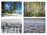 Photo Wallpaper 3.7 x 2.5m £9.99 @ Lidl From 2nd Feburary