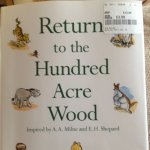 Return to the hundred acre wood - tkmaxx £3.99