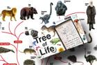 Order Your Free Tree of Life Poster