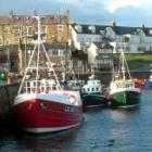 Full Day Sea Fishing Experience for One £49.93 Or £85 for two plus 10% Quidco @ The Hut