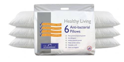 Downland Pack Of 6 Healthy Living Pillows Ebay Deals