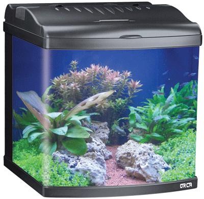 Boyu mt50 80 litre aquarium swelluk hotukdeals for Aquarium 80 litres