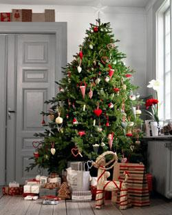 Ikea christmas tree instore belfast for 25 and receive - Sapin de noel artificiel ikea ...