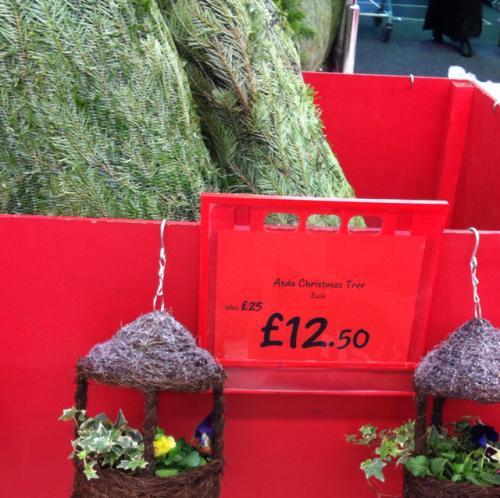 Asda Christmas Trees: Half Price Real Christmas Trees At Park Royal Asda London