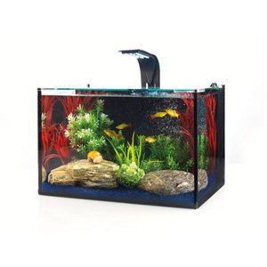 Love fish concept tank 27l in store special clearence 30 for Fish tank deals
