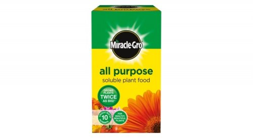 Miracle gro all purpose plant food instore 1kg 1 b m Miracle gro all purpose garden soil