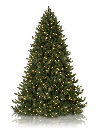 Balsamhill Christmas trees Sale - Save up to 30% off ...