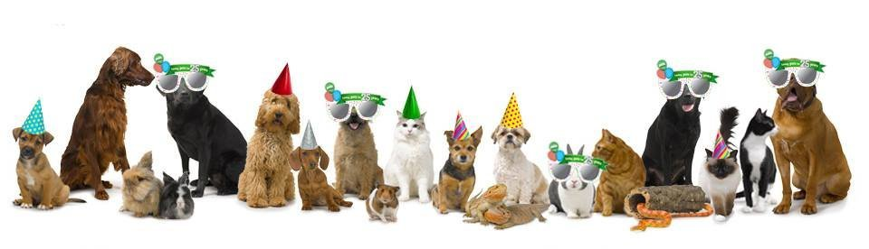 pets at home 25 years