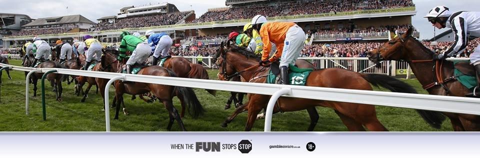 sky bet horse race