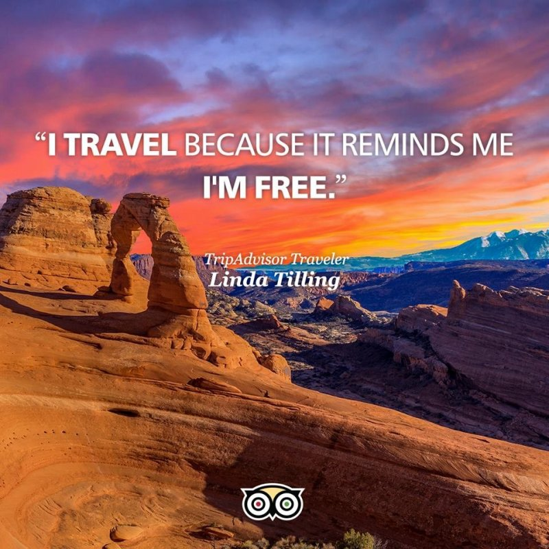 tripadvisor i travel because i´m free